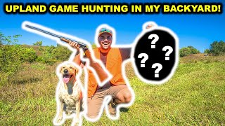 BACKYARD Upland Game Hunting CHALLENGE!!! (Catch Clean Cook)