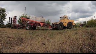 Трактор Кировец. Посев озимой пшеницы 2019 посевным комплексом Алькор-10.