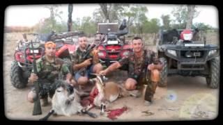 Pig hunting australia qld 2015