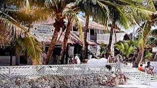Island of Sun Klinik unter Palmenelsong