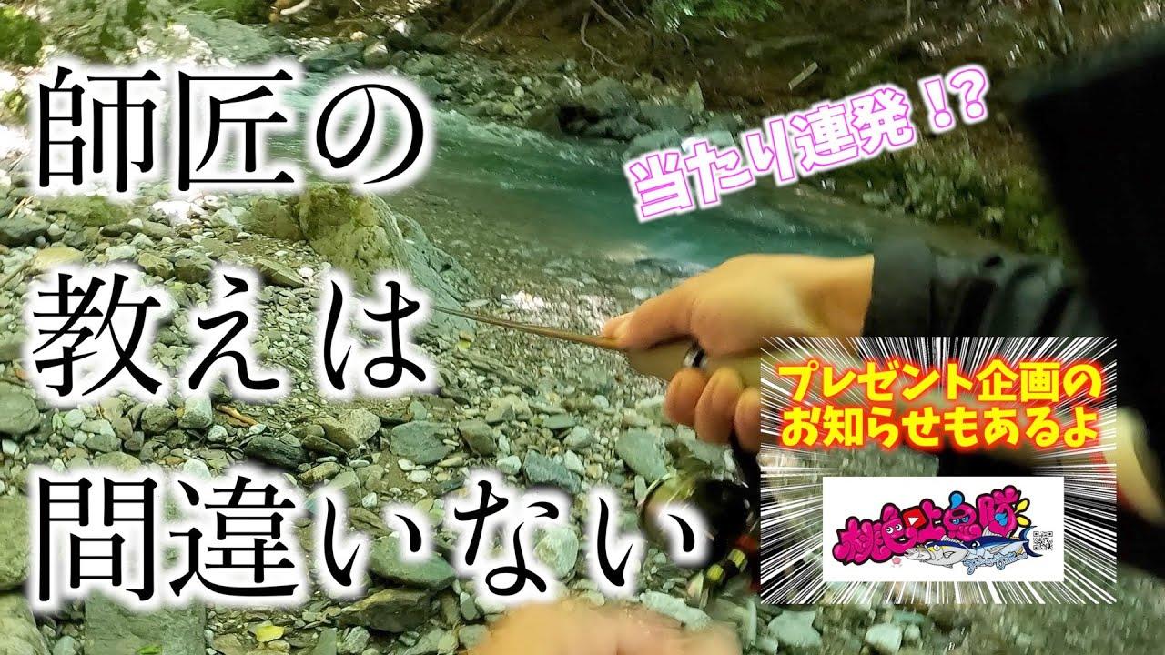 【渓流フィッシング】梅雨の貴重な晴れ間にマボちゃんガイドで渓流行ってアドバイス通りやってみたら魚の反応が激変した。You should listen to your teacher.