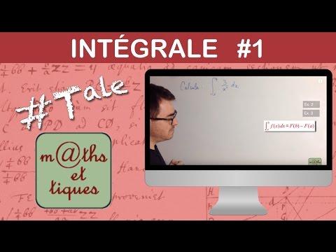 Calculer une intégrale (1) -Terminale
