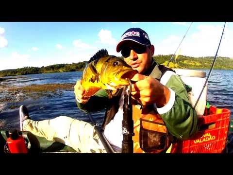 Barkero Fishing Tucuna Amarelo