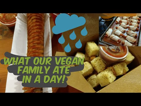 What Our Vegan Family of 5 Ate in a Day + Tiny House Family Life!