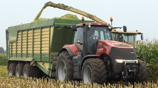 Krone Big X 680 in the field chopping corn during season 2020 | Case IH Magnum 340 & MF 8737 | DK