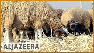 🇱🇾 Libya economic woes overshadow Eid al-Adha celebration | Al Jazeera English
