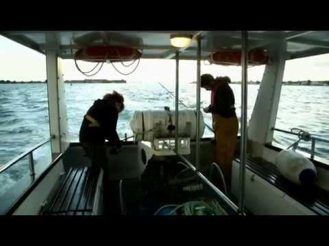 Les rapports sur la pêche dans le delta volge avril