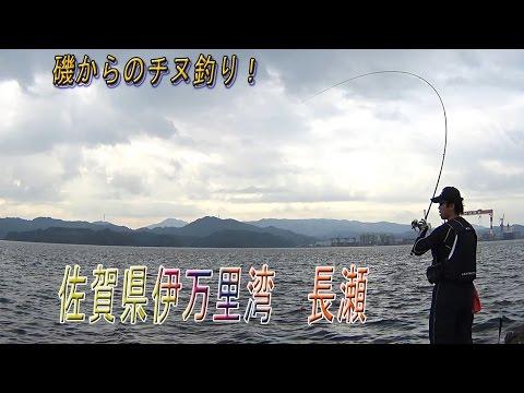 佐賀県 伊万里湾 長瀬  磯チヌ釣り   根掛りが多くて難しい釣り場ですね・・・ パート2