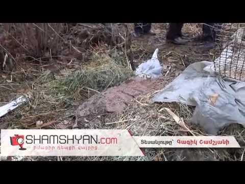 Դաժան սպանություն Երևանում