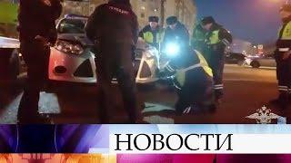 ВМоскве полицейские помогли спасти котенка, оказавшегося наоживленной трассе.
