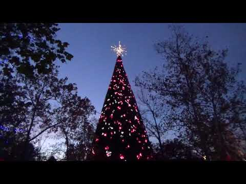 Silver Dollar City - Tree Lighting (New 80 Foot Tree)