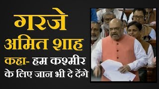 Video  We Will Sacrifice Our Lives For Kashmir Says Amit Shah  हम जान भी दे देंगे