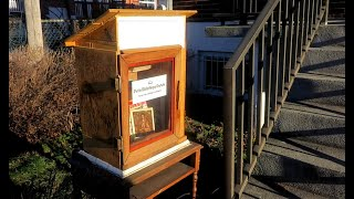 Montreal artist builds Little Free Library during the pandemic