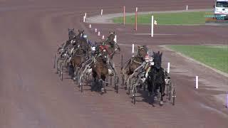 Vidéo de la course PMU MARATHON DE NOEL