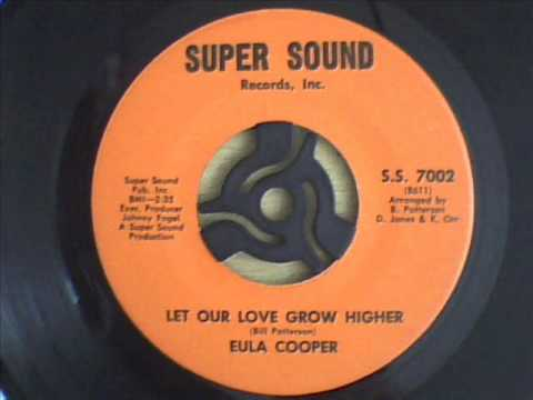 Eula Cooper Try Love Make Me Do Foolish Things