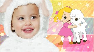 Mary Had a Little Lamb | Cute Lullaby