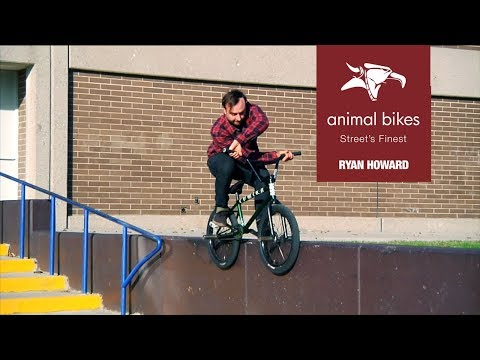 BMX - ANIMAL BIKES: A MASTERS COURSE IN GRINDS W/ RYAN HOWARD