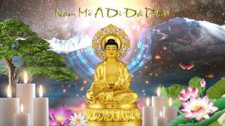 Mọi người cùng niệm Phật chào mừng ngày mới và hồi hướng công đức c...