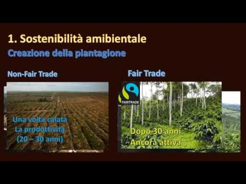 Fair Trade (Caffè, cioccolato, zucchero, banane, etc.) - Perchè comprarlo