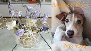 NYCvlog | 뉴욕브이로그 | 강아지와 함께하는 날…