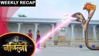 Nandini - Weekly Recap | 11 Apr - 18 Apr 2021 | Sun Bangla TV Serial | Bengali Serial