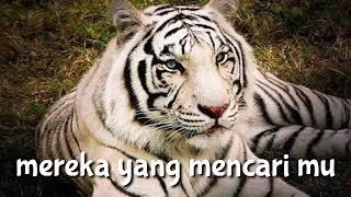 Download lagu Kumpulan Story'wa macan putih murkanya sang pendiam