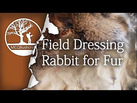 Bushcraft Field Dressing Rabbit For Meat & Fur