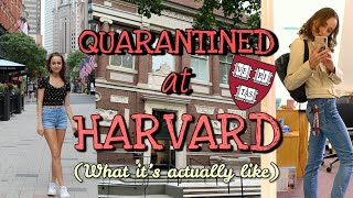 QUARANTINE AT HARVARD COLLEGE VLOG! (What it's actually like!)