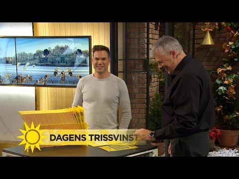 Damian XOV Ardestani Framför Låten Atarax - Nyhetsmorgon (TV4)
