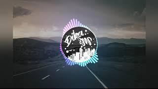 DJ PIARA AYAM YANG VIRAL 2019