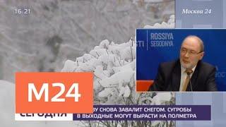 Месячная норма осадков может выпасть в Москве за первые дни февраля - Москва 24