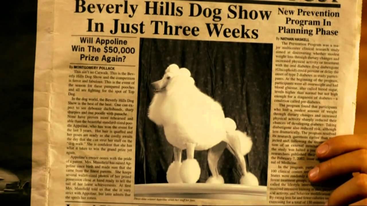 Un chihuahua en Beverly Hills 2 - Trailer Español HD - YouTube