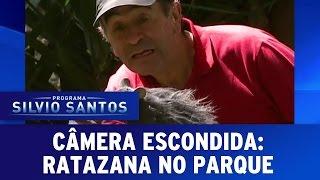Câmeras Escondidas: Ratazana no parque