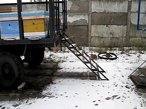 Зимовка пчел  Донная вентиляция в улье зимой Переход с рамок 230  на 145
