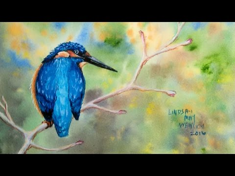 LIVE Kingfisher in Watercolor/Colored Pencil Tutorial