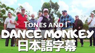 Download トーンズ・アンド・アイ「ダンス・モンキー 」【日本語字幕付き】 Mp3 and Videos