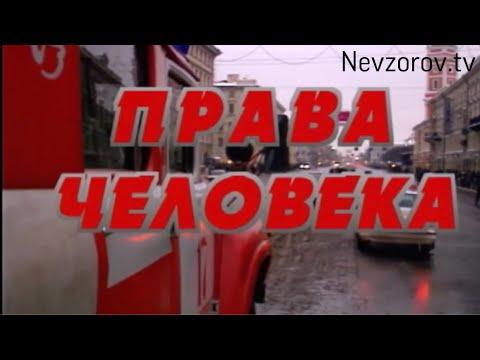 Права человека. Невзоров. Архивное видео из авторской программы «Дикое поле».