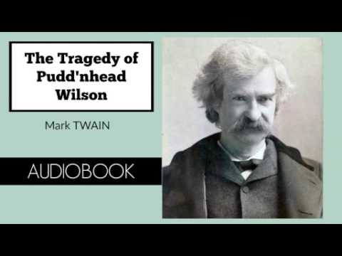 an analysis of the theme of racism in mark twains novel puddnhead wilson What did mark twain think of slavery mark twain was a product of missouri, a slave state his father was a judge, but he also traded in slaves at times.
