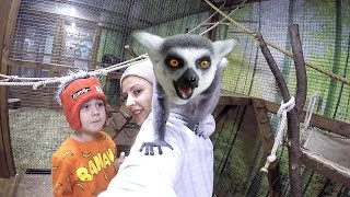 Kids at the Zoo | Let's Go to the Zoo Animals for Children to Learn & Sing Old MacDonald with Tim