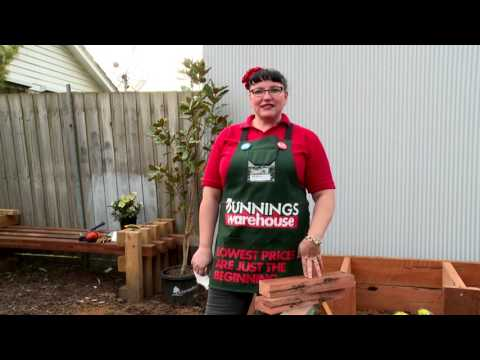 D.I.Y. Wooden Compost Bin - D.I.Y. At Bunnings