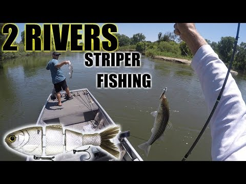2 RIVERS - STANISLAUS & TUOLEMNE RIVER !!GIANT!!
