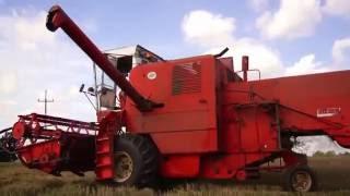 Żniwa 2016 Łódzkie: Akcja pszenżyto