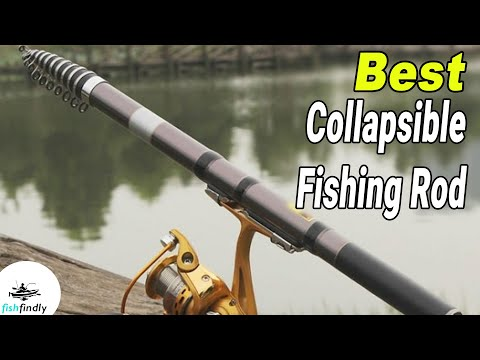 Best Collapsible Fishing Rod In 2020 – Make Your Fishing Trip More Easier!