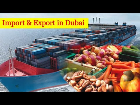 Import in Dubai for Fruit and Vegetables