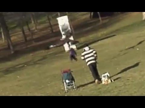Águia tenta levar criança no parque