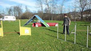 Repeat youtube video Agility: Parcours-Training