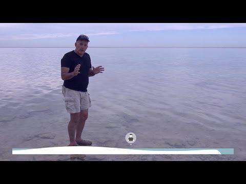 UQx TROPIC101x 2.3.2 Profile of a Reef Flat
