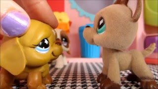 LPS Paused | Episode 2 | Danger in the air