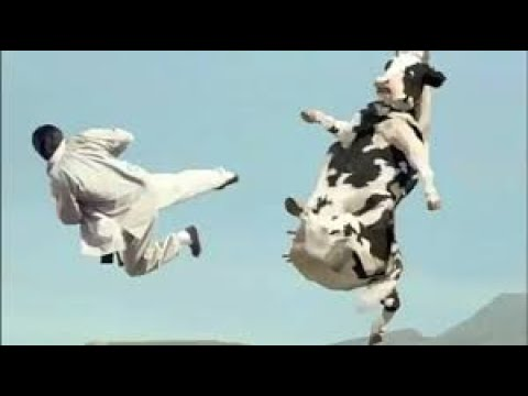 Драка:Джеки Чан против Коровы.Старое видео.Ностальгия.