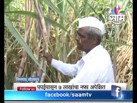Agrowon | Telecated On 18-06-2015 | Part 01
